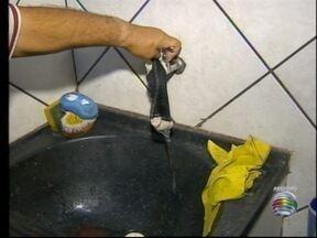 Moradores de Dracena ficam se abastecimento de água - Sistema de fornecimento da cidade passa por manutenção.