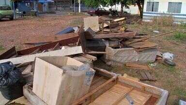 Moradores colhem lixo da dengue em mutirão - Moradores colhem lixo da dengue em mutirão
