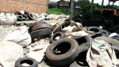 Lixo a céu aberto em barracão de recicláveis preocupa moradores em Irati - A preocupação é por causa do risco de proliferação do mosquito da dengue.