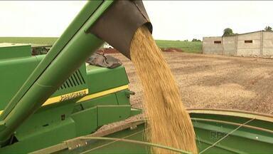 Safra de verão pode ter queda no Paraná - A previsão é que o Estado produza 18 milhões e 100 mil toneladas de grãos./ 100 mil toneladas a menos que a previsão inicial da safra de verão 2015/2016.