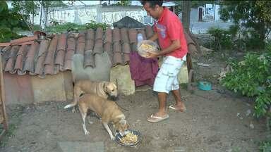 Homem consegue abrigo para cuidar de animais abandonados em Campina Grande - Veja a iniciativa no quadro Exemplos do Bem.