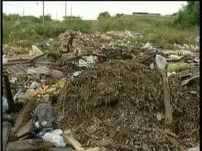Calendário: Bairro em Valadares enfrenta problemas de lixo e abandono - Moradores reclamam de lotes que viraram depósitos de entulhos e animais.