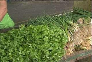 Variação de frutas e legumes varia até 150% em Fortaleza - Comerciantes alegam as chuvas que caem no Ceará.