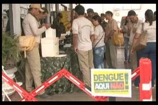 Mutirão de combate ao mosquito Aedes aegypti percorreu cidades do Pará - Mutirão de combate ao mosquito Aedes aegypti percorreu cidades do Pará