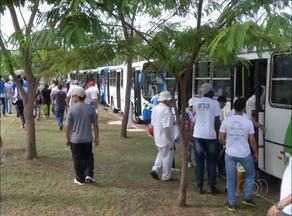 Mais de dois mil voluntários saem às ruas de Palmas em campanha contra o Aedes aegypti - Mais de dois mil voluntários saem às ruas de Palmas em campanha contra o Aedes aegypti