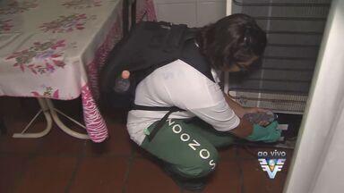 Veja como evitar focos da dengue dentro de casa - Lugares a serem vigiados incluem bandejas de geladeira, calhas e ralos.