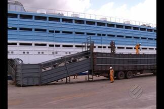 CDP rebate críticas de exportadores de gado que reclamam de prejuízos com interdição - Parte do porto de Vila do Conde, em Barcarena, está parcialmente interditado e proibido de embarcar bois vivos depois do naufrágio de um navio há mais de quatro meses.