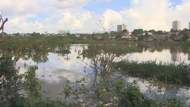 Nível do Rio Madeira passa dos 15 metros e já afeta três bairros de Porto Velho - Cerca de 100 pessoas já foram retiradas de casa por medida de segurança.