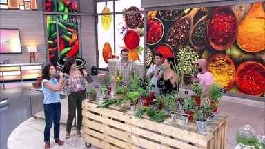 Sabrina Jeha mostra curiosidades sobre temperos - Herborista diz que ervas mais usadas no Brasil são salsinha, cebolinha, louro e coentro. Ela mostra algumas plantas pouco conhecidas e oferece chás para os convidados