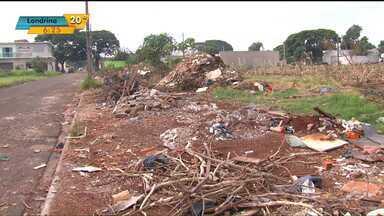 Em meio a epidemia de dengue, lixo em terrenos preocupa Sarandi - Prefeitura tem aplicado multas nos donos dos lugares, mas nem isso tem adiantado