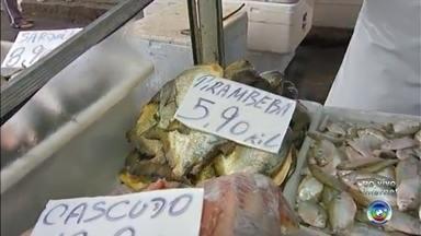 Semana Santa aumenta compra de peixes no comércio da região - Sexta-feira (25) é tradicionalmente o dia de comer peixe para os cristãos. Com isso, o movimento de clientes aumenta em feiras e peixarias nesta quinta-feira (24). A repórter Luciana Campinhos tem as informações ao vivo.