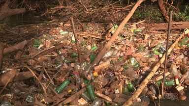 Ribeirão Lindóia, mostrado em situação deplorável pelo Paraná TV, deve ser limpo - Ação será realizada na semana que vem.