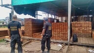 Polícia Federal prende dez pessoas na operação Cajari no Amapá - Polícia Federal prende dez pessoas na operação Cajari no Amapá