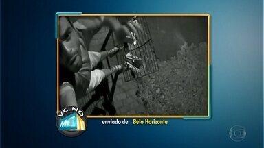 Vídeo flagra roubo de câmera de segurança de condomínio na Região Oeste de Belo Horizonte - A ação foi gravada pelo próprio sistema. Vander dos Santos enviou vídeo de seu carro preso a uma vala que cedeu próximo ao meio-fio, na Região Oeste de Belo Horizonte. Já Joel Silva reclama de um buraco aberto no meio de uma rua no bairro Lindeia.O morador de Betim Cristiano pede limpeza em trilha usada por moradores do bairro.