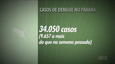 Paraná tem quase dez mil novos casos de dengue - Os novos casos foram registrados em uma semana, seguindo o novo boletim da Secretaria Estadual de Saúde. Mais seis mortes pela doença também foram registradas.
