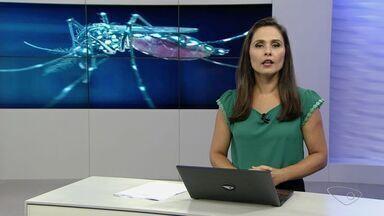 ES registra mais de 40 mil casos de dengue e 12 mortes confirmadas - Até o momento, 3.513 casos de infecção pelo vírus da zika foram notificados.Em todo o estado, 130 casos de microcefalia foram registrados.