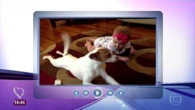 Cachorro incentiva bebê a engatinhar e faz sucesso na internet - Ana Maria Braga e Louro José se divertem com vídeos de interação entre cães e bebês