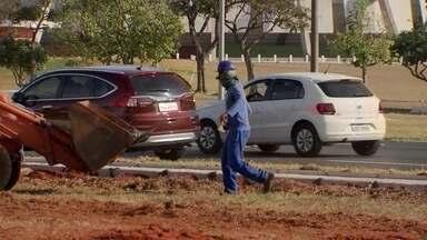 Moradores questionam a construção de novas calçadas na área central de Brasília - Eles temem que árvores nativas sejam cortadas.