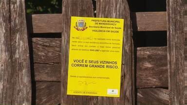 Adesivos são a mais nova arma de combate ao mosquito da dengue em Mandaguaçu - Segundo a Secretaria de Saúde do Estado, a cidade entrou na lista de cidades com epidemia de dengue.