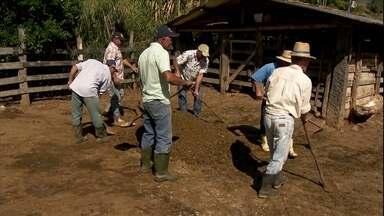 Agricultores pagam ajuda que recebem com serviço e não com dinheiro - 'Troca de dia' ajuda produtores que não têm condições para contratar mão de obra.