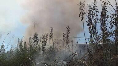 Fogo atinge parte de matagal perto do distrito industrial de São Carlos, SP - Bombeiros informaram que população usa o espaço para descartar lixo.