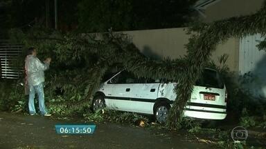 Uma pessoa morre e 170 árvores são derrubadas em temporal na capital - A chuvarada começou na tarde desta segunda (16) e causou muitos estragos na capital paulista.