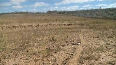 Seca atinge açudes e produtores perdem plantação de milho e feijão em Pernambuco - Em fevereiro, os sertanejos estavam felizes com a volta da chuva. Mas depois de três meses a seca já tomou conta de tudo. As barragens e açudes estão entrando em colapso, e quem plantou milho ou feijão perdeu tudo.