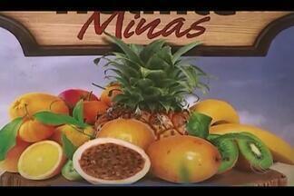 Circuito de palestras sobre fruticultura acontece em Ituiutaba - Extensionista da Emater, Rodrigo Esteves de Melo, dá detalhes da programação. Veja como participar.