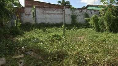 Terrenos baldios abandonados aumentam a proliferação do Aedes aegypti - Terrenos baldios abandonados aumentam a proliferação do Aedes aegypti.