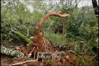 Tornado, chuva e ventania provocam estragos em Marilândia, distrito de Itapecerica - Segundo o Instituto Nacional de Meteorologia (Inmet), tornado foi avaliado em escala 1. Não houve vítimas.