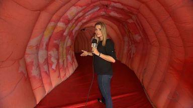 O MTTV faz uma viagem didática pelo intestino humano - O MTTV faz uma viagem didática pelo intestino humano