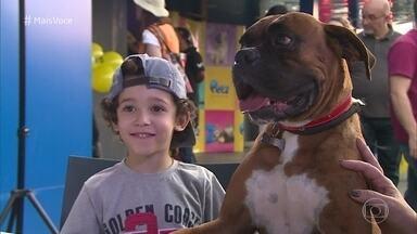 Cachorro com nome de gente é tendência mundial - Ana Maria Braga explica o nome de suas cadelinhas Sombrinha, Cristal e Paçoca