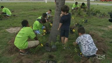Grupo planta mudas em São Luís em homenagem ao Dia Mundial do Meio Ambiente - Grupo de pessoas planta mudas em São Luís em homenagem ao Dia Mundial do Meio Ambiente.