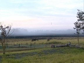 Rancharia tem dias típicos de um inverno rigoroso - Cidade registrou geada nesta terça-feira (14).