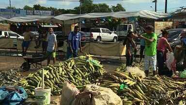 Vendas de alimentos típicos continuam aquecidas na Ceasa - Vendas de alimentos típicos continuam aquecidas na Ceasa.