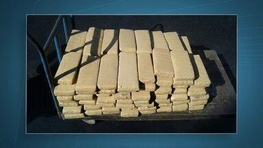 Polícia apreende 70 kg de maconha no Engenho das Lajes - O droga estava escondida em uma chácara. Segundo os policiais, a maconha seria vendida em Sobradinho e Taguatinga.