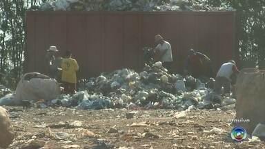 Catadores de lixo e integrantes da FNL protestam em Itapetininga - Cerca de 20 catadores de lixo de Itapetininga (SP) realizaram um protesto às margens da rodovia Gladys Bernardes Minhoto (SP-129), nesta segunda-feira (4), para reivindicarem melhores condições de trabalho e contra o impedimento de entrarem na nova área onde o lixo está sendo depositado em Itapetininga (SP), já que o 'lixão' foi fechado.