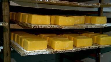 Operação do MP combate fraude em leite e queijo em quatro cidades do RS - Foram cumpridos cinco mandados de prisões nesta terça-feira (5).