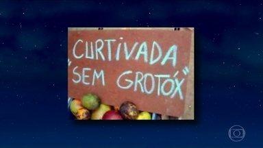 Jô comenta pérolas em placas espalhadas por ruas e estradas do Brasil e do mundo - Fernanda Torres e a banda Mar Aberto são as convidadas da noite