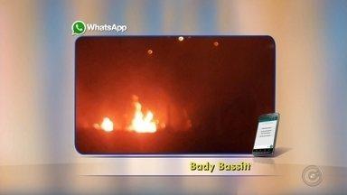 Área de reflorestamento pega fogo em Bady Bassit - Uma área de reflorestamento pegou fogo na noite desta segunda-feira (11) em Bady Bassitt (SP). Telespectadores mandaram fotos pelo aplicativo da TV TEM. Uma brigada de incêndio foi chamada e controlou as chamas.