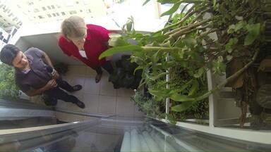Saiba como cultivar várias plantas em uma sacada bem pequena - No quadro 'Espaços Verdes' você vai aprender a fazer e manter uma horta vertical