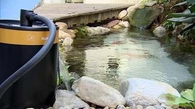 Designer paulista descobre novo mercado no ramo de limpeza de aquários - Ele desenvolveu um filtro que ajuda manter o aquário limpo. Quem tem aquário em casa sabe a dor de cabeça que é para manter tudo sem sujeira.
