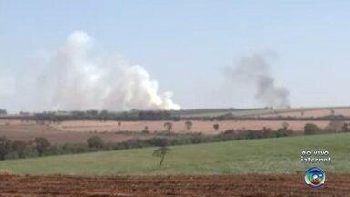 Queimada atinge grande área na região de Palestina, SP - O número de queimadas aumentou muito neste ano na região em relação ao ano passado. No fim de semana, uma grande área foi atingida em Palestina (SP).
