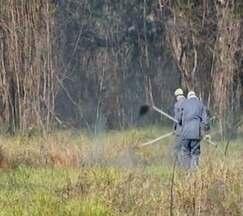 Queimadas reduzem qualidade do ar em Divinópolis - Incêndios têm sido registrados em vários pontos da cidade. Queimada é crime ambiental.