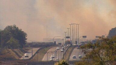 Queimada preocupa motoristas que passam pela BR-153, próximo a Goiânia - O fogo aconteceu no começo da tarde e uma gigante cortina de fumaça se formou na área.