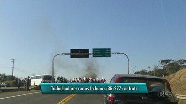 Agricultores familiares bloqueiam BR-277 em Irati - O bloqueio foi na manhã desta segunda-feira. Eles protestaram contra as condições de trabalho.