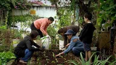 Brasileiros colocam a mão na terra e produzem alimentos que consomem - Hortas se multiplicam no meio do concreto. Volta às raízes tem ligação muito forte com uma maior preocupação com a alimentação.