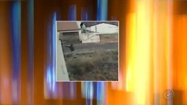 Vídeo mostra menor suspeito de estupro pulando muro de casa - Ele teria invadido o local, roubado e estuprado a moradora em Tupã (SP).Suspeito de 17 anos foi detido e está à disposição da Vara da Infância e Juventude.