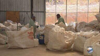 Pouso Alegre (MG) ganha unidade para recolhimento de embalagens de agrotóxicos - Pouso Alegre (MG) ganha unidade para recolhimento de embalagens de agrotóxicos