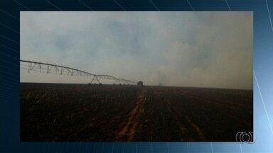 Bombeiro sofre queimaduras durante combate a incêndio em vegetação - Ele estava trabalhando quando vento mudou de direção e fogo o atingiu. Internado no Hugol, paciente tem estado de saúde regular, em Goiás.